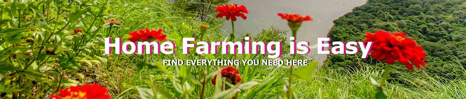 farming-supplier-wholesale